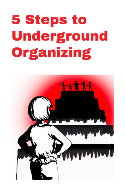"""5 Steps to Underground Organizing"" zine cover"